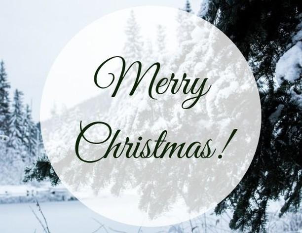 Wishing you a wonderful Christmas today! 🎄⠀ .⠀ .⠀ .⠀ #merrychristmas #christmas #christmas2018 #happychristmas #happyholidays #holidays2018 #floridachristmas #handmadechristmas #villageofthearts #artwalk #christmaswonderland #christmasdecor #holidaydecor #handmadechristmas #christmasgift #holidaydecor #holidaygift #handmadeholiday #shopsmall #shopsmallbusiness #shopsmallsrq #shopsmallbradenton #shoplocal #foresttofinish #forest2finish #f2f #f2fdesigns #foresttofinishdesigns