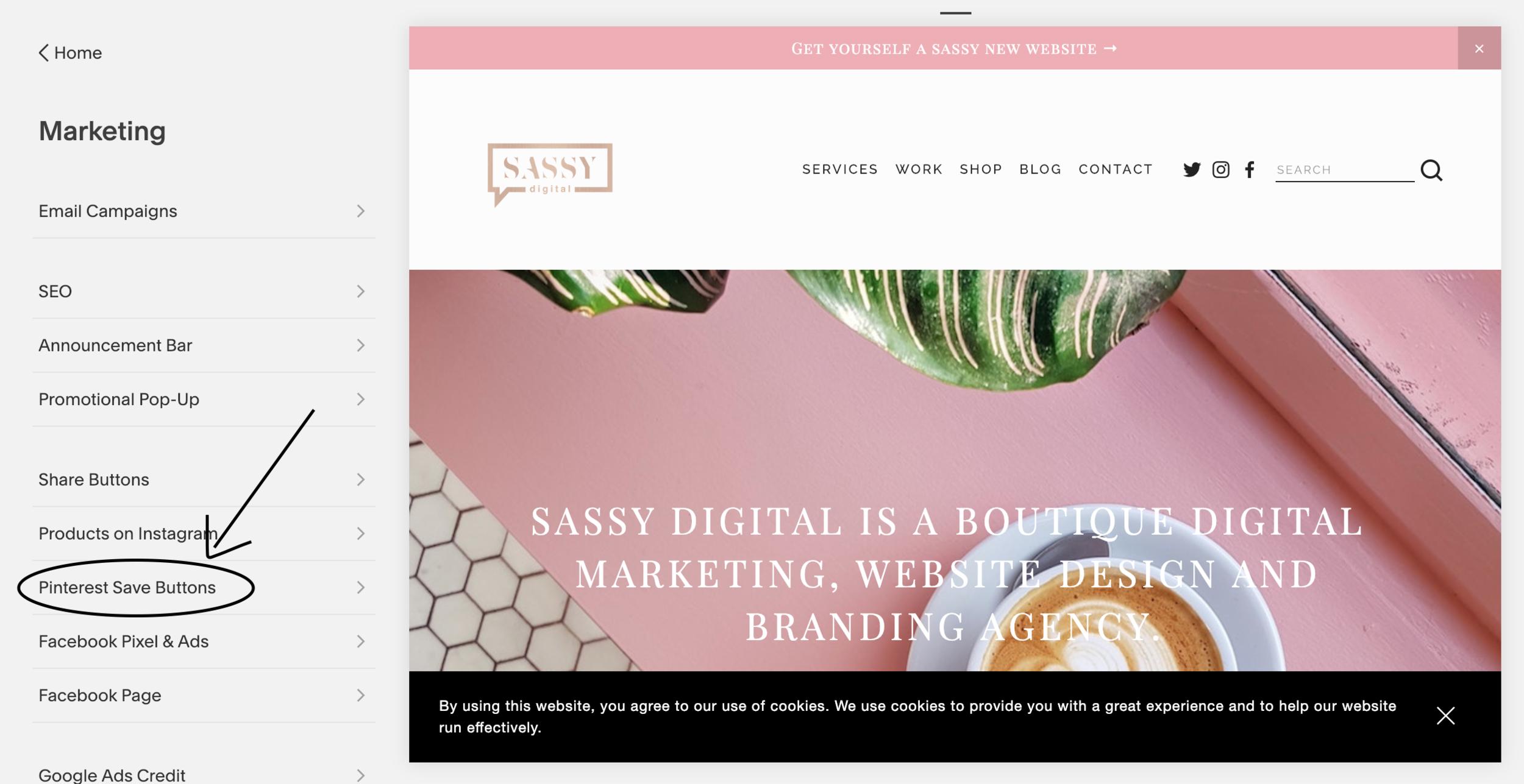 Pinterest save buttons squarespace