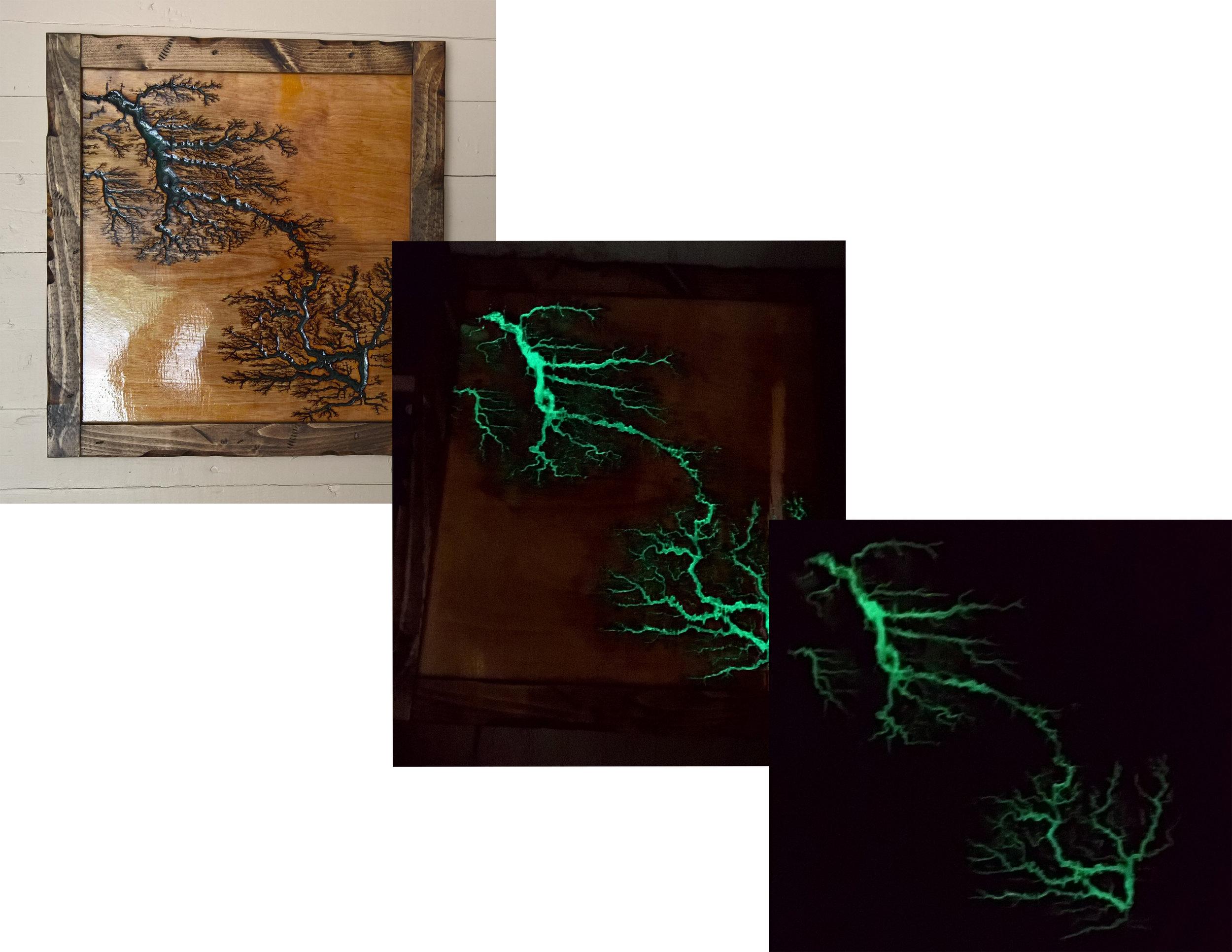 Lichtenberg Fractal Art Work 01.jpg