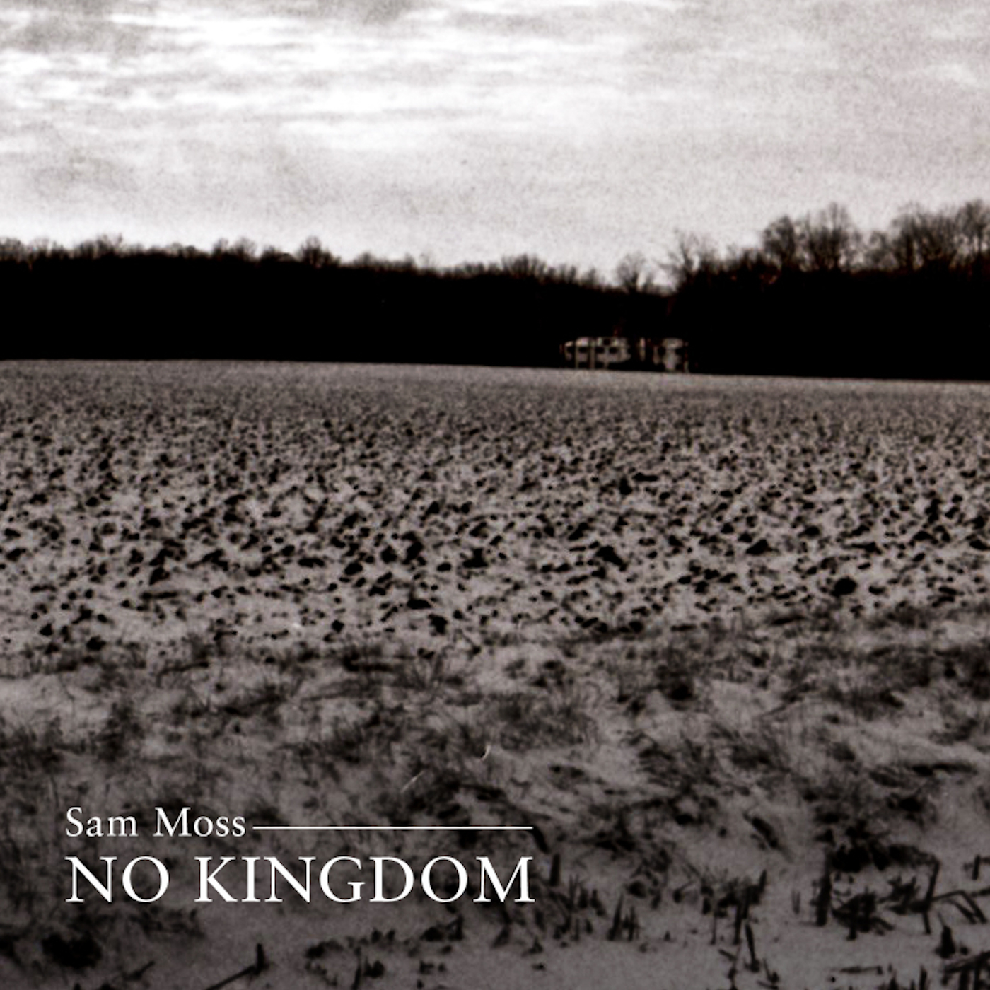NO KINGDOM Cover-1400- 300dpi.jpg