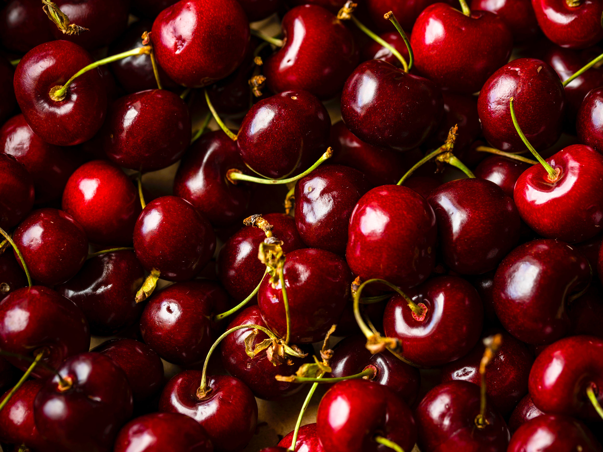 Cherries - Download Crop Programme