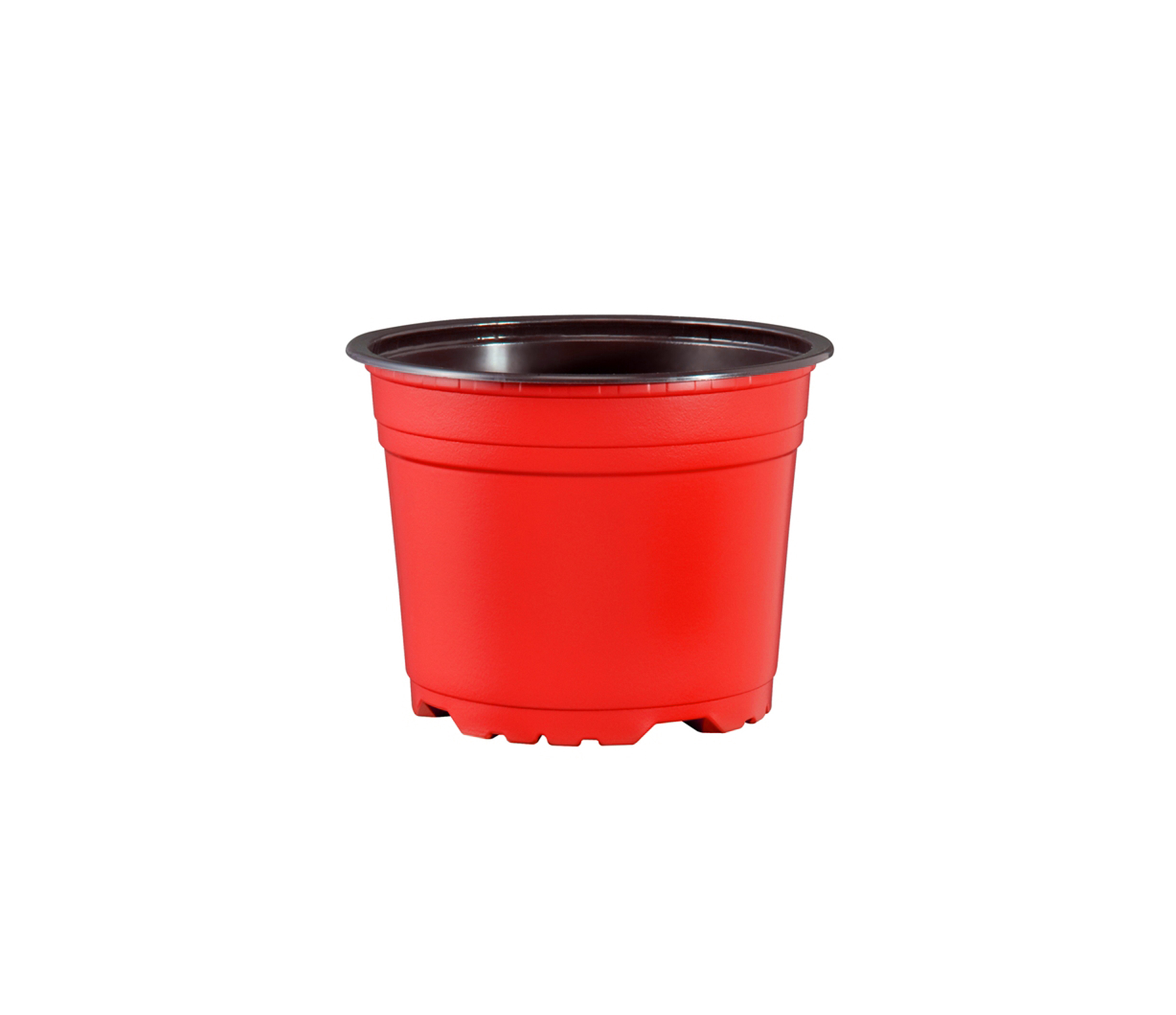 coloured pots red.jpg