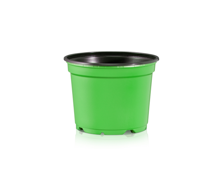 coloured pots green.jpg