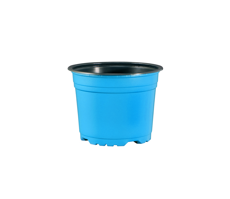 coloured pots blue.jpg