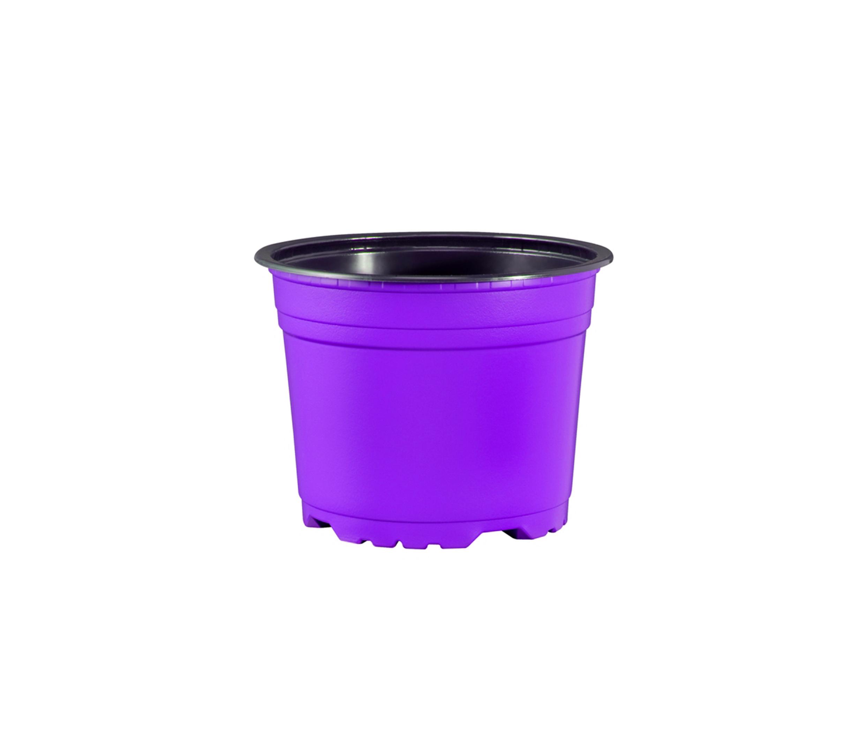 coloured pots purple.jpg