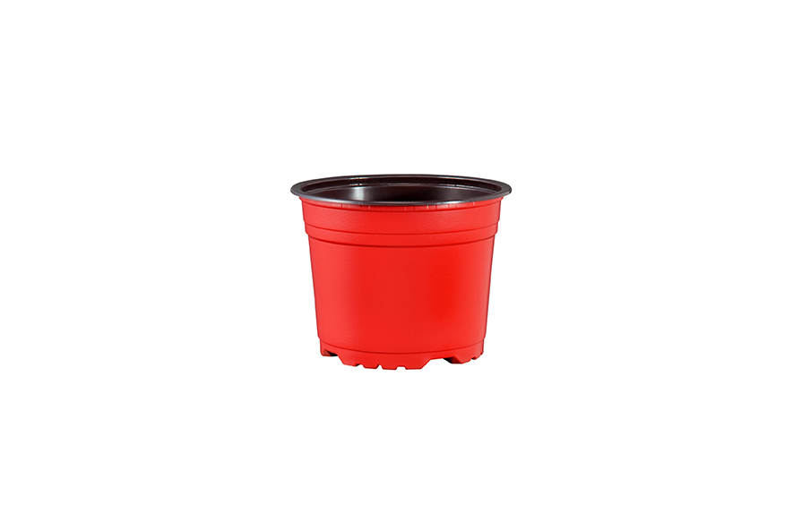 Coloured & Printed Pots -
