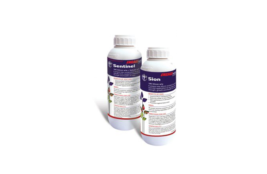 Silicons - The Silicon range of fertilisers, bring an innovative new silicon technology to professional growing.