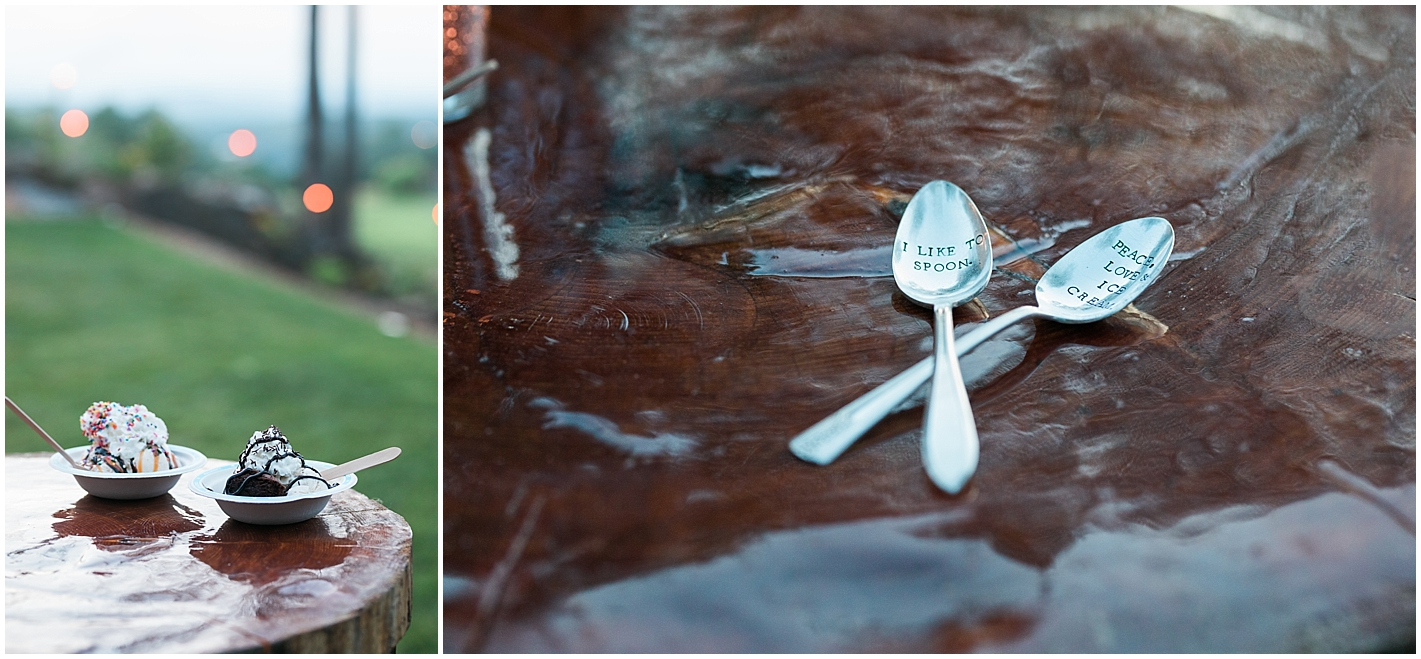 Ben And Jerry's Ice cream at Wedding Photos by Alyssa Parker Photography