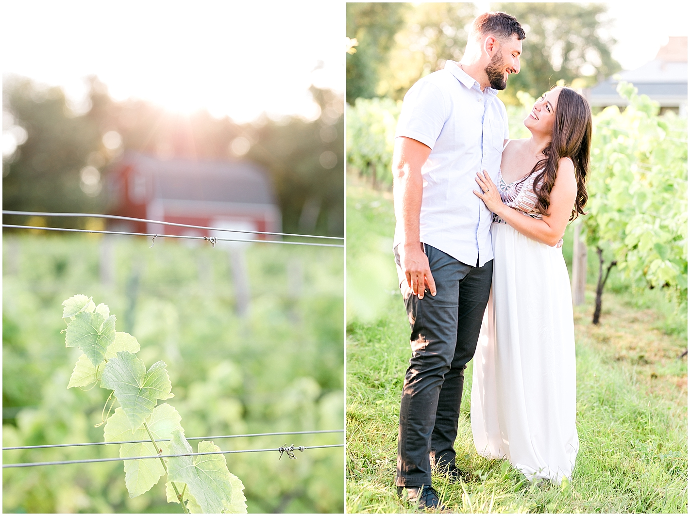 Engagement photos Broken Creek Vineyard in Shrewsbury MA by Alyssa Parker Photography