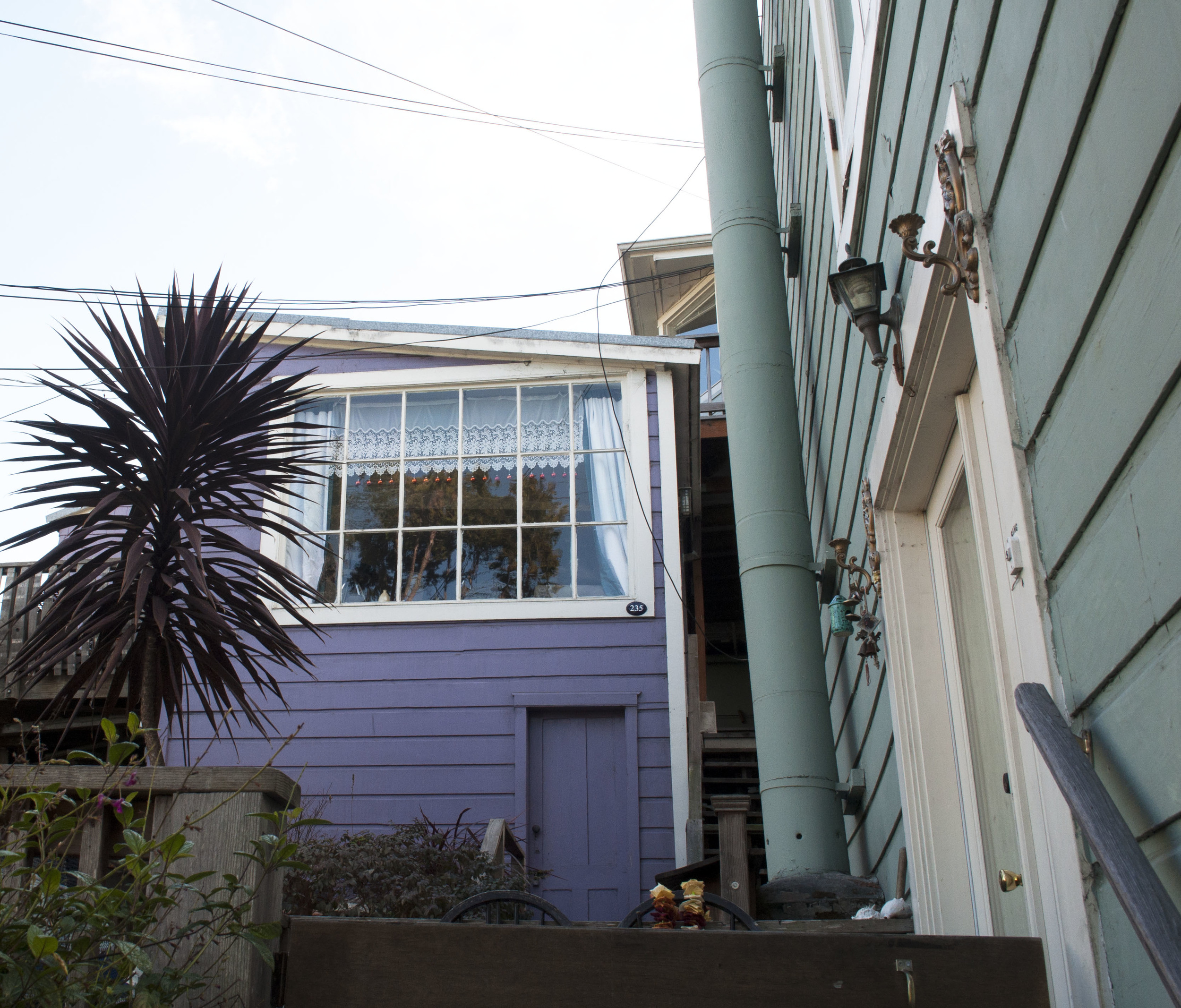 purple cottage on Telegraph Hill