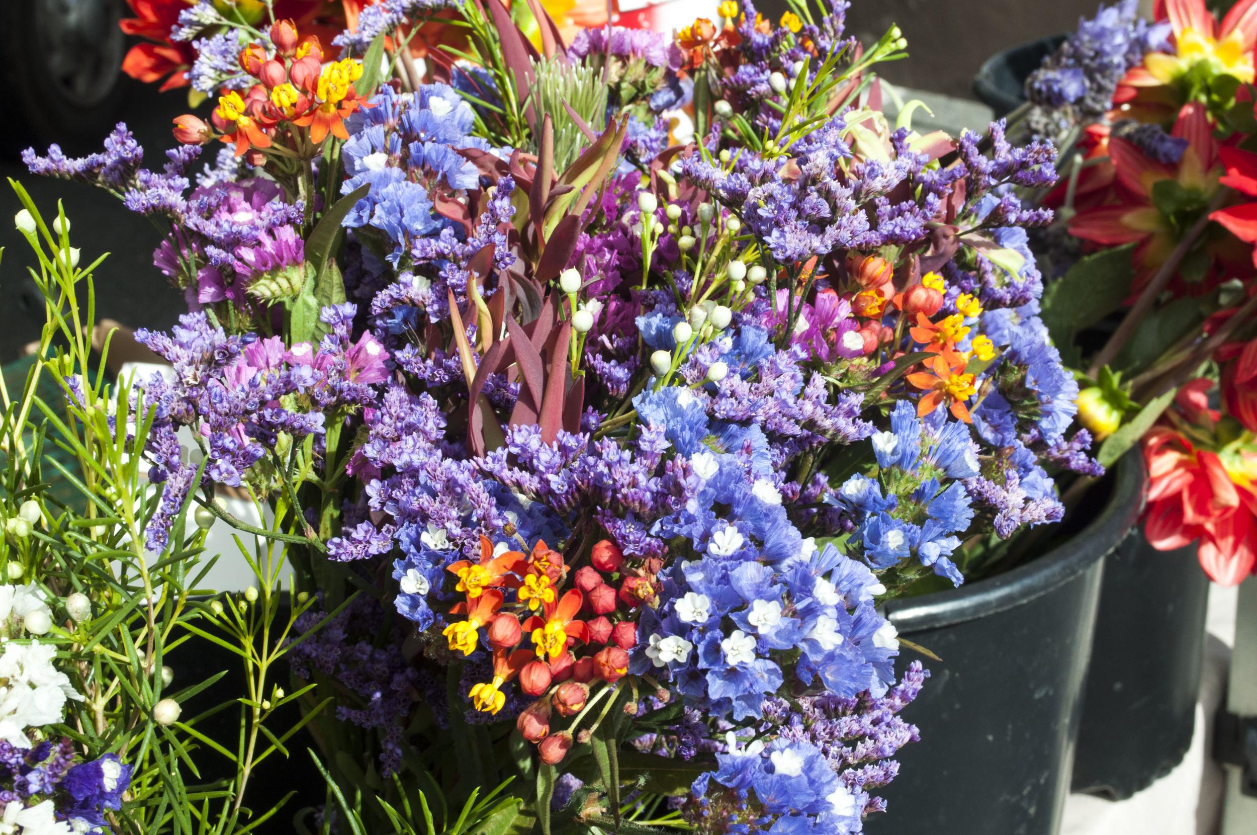 small flowers 1.jpg