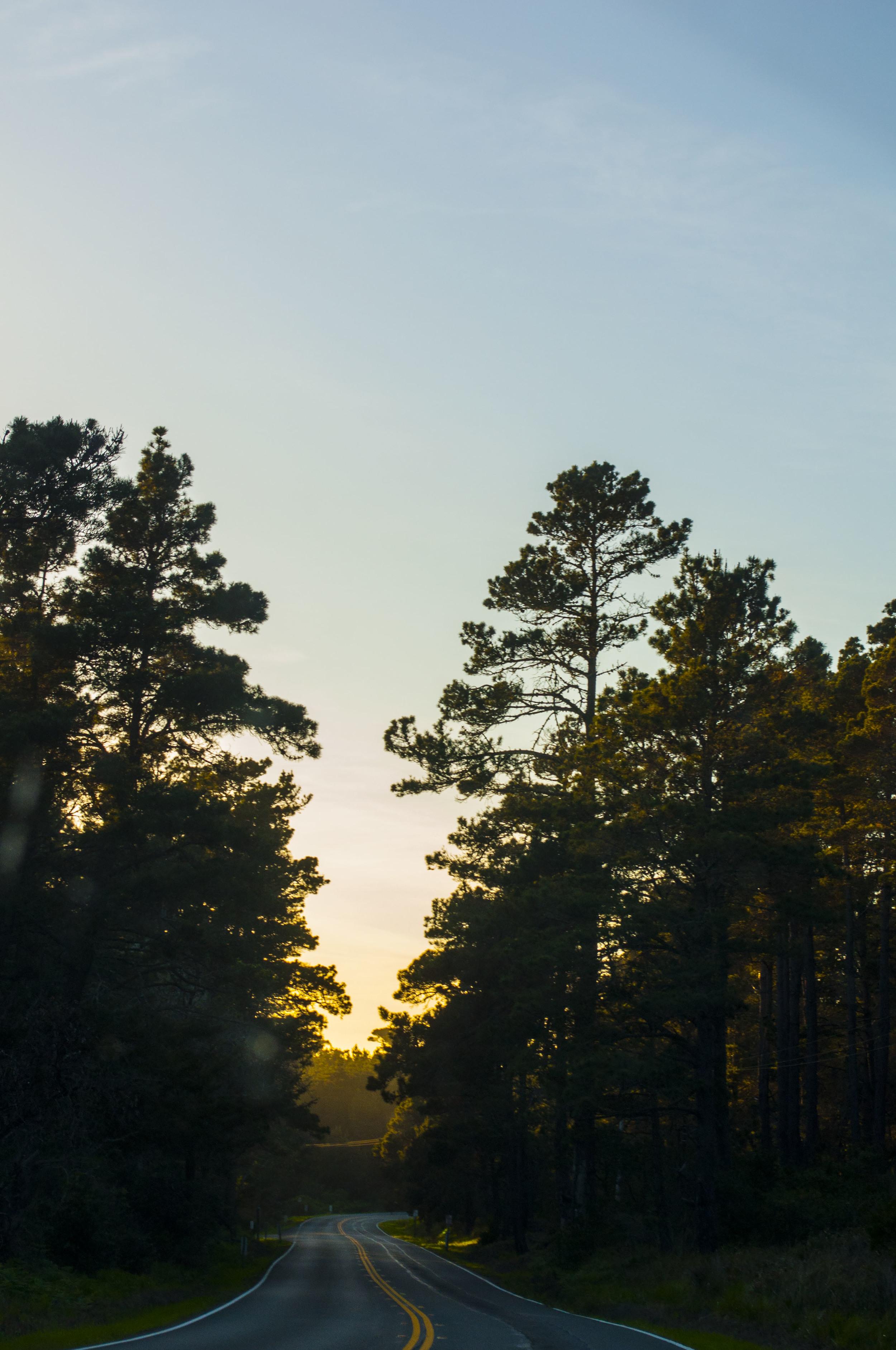 weekend sunset california