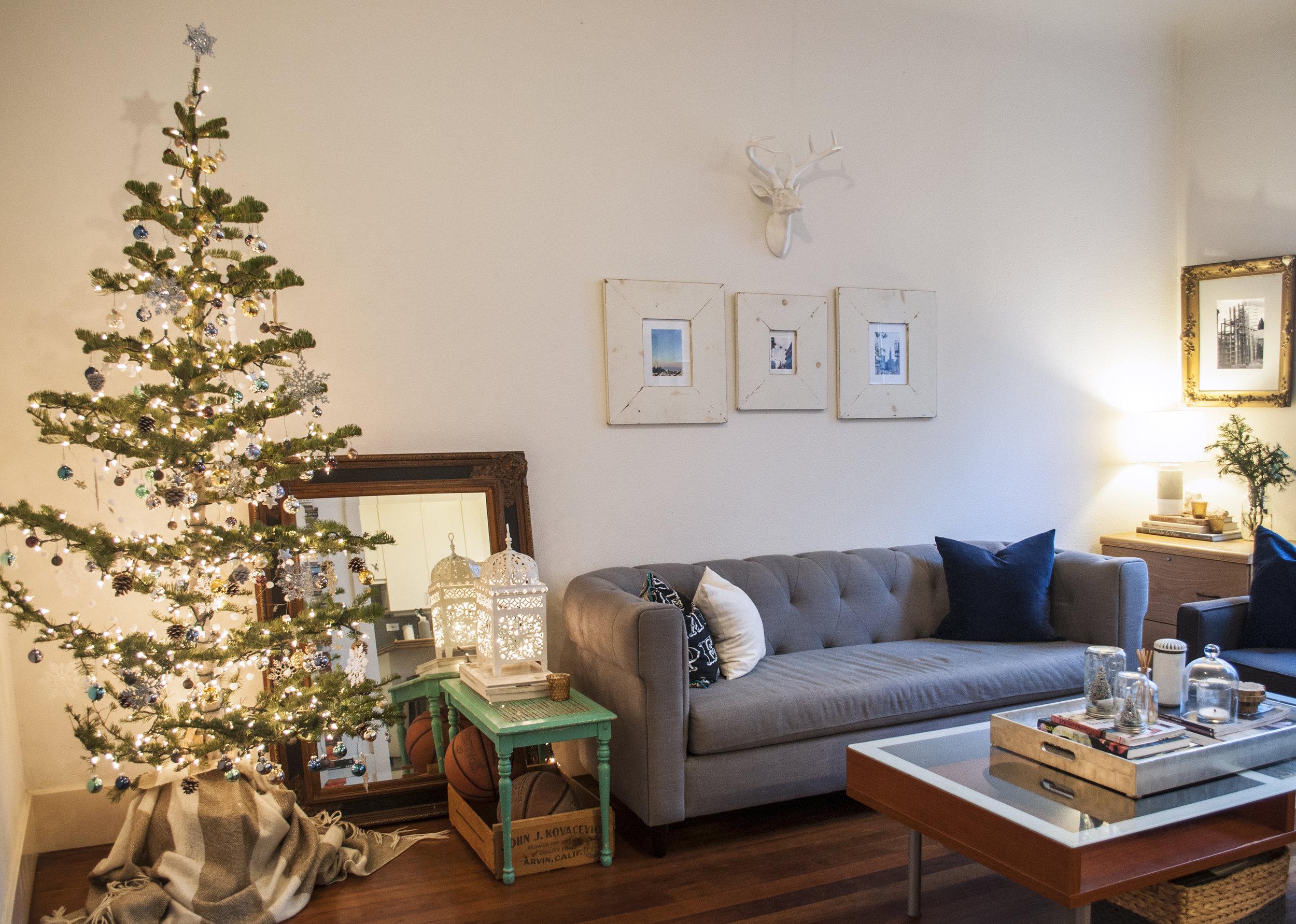 silvertipped fir christmas tree scandinavian tree
