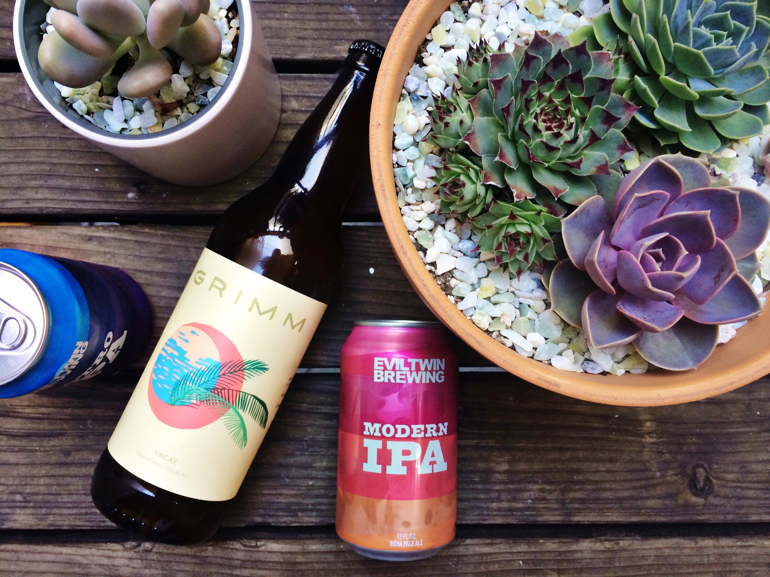 beer and succulents flatlay summer goals