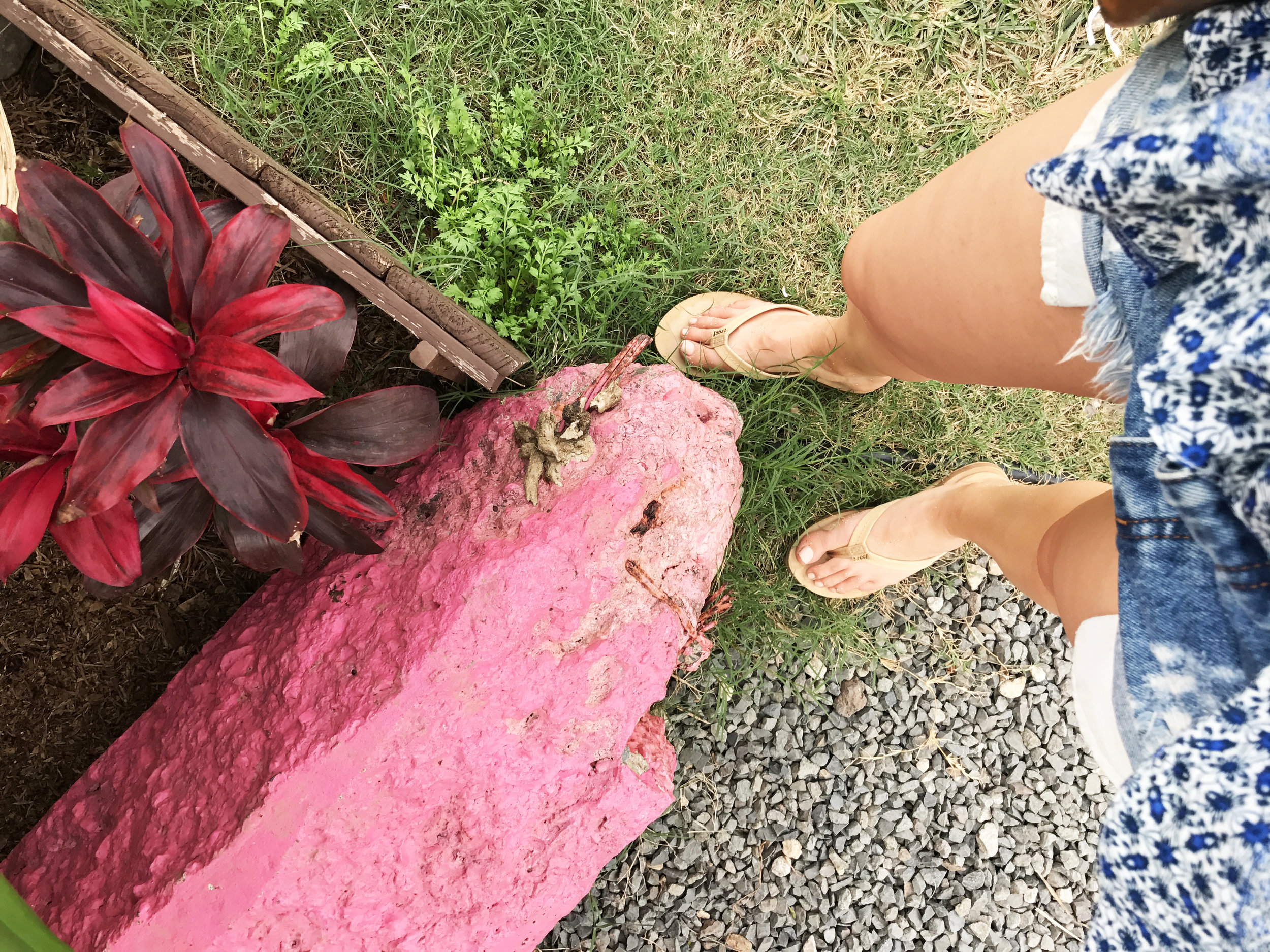 oahu ootd island style vacation outfits