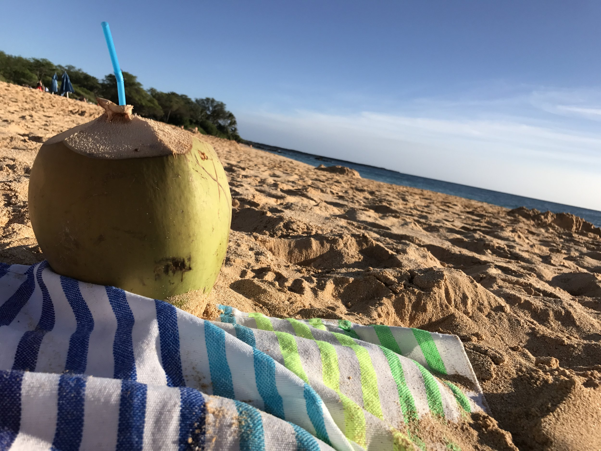 maui beach vibes coconut water tropical getaway