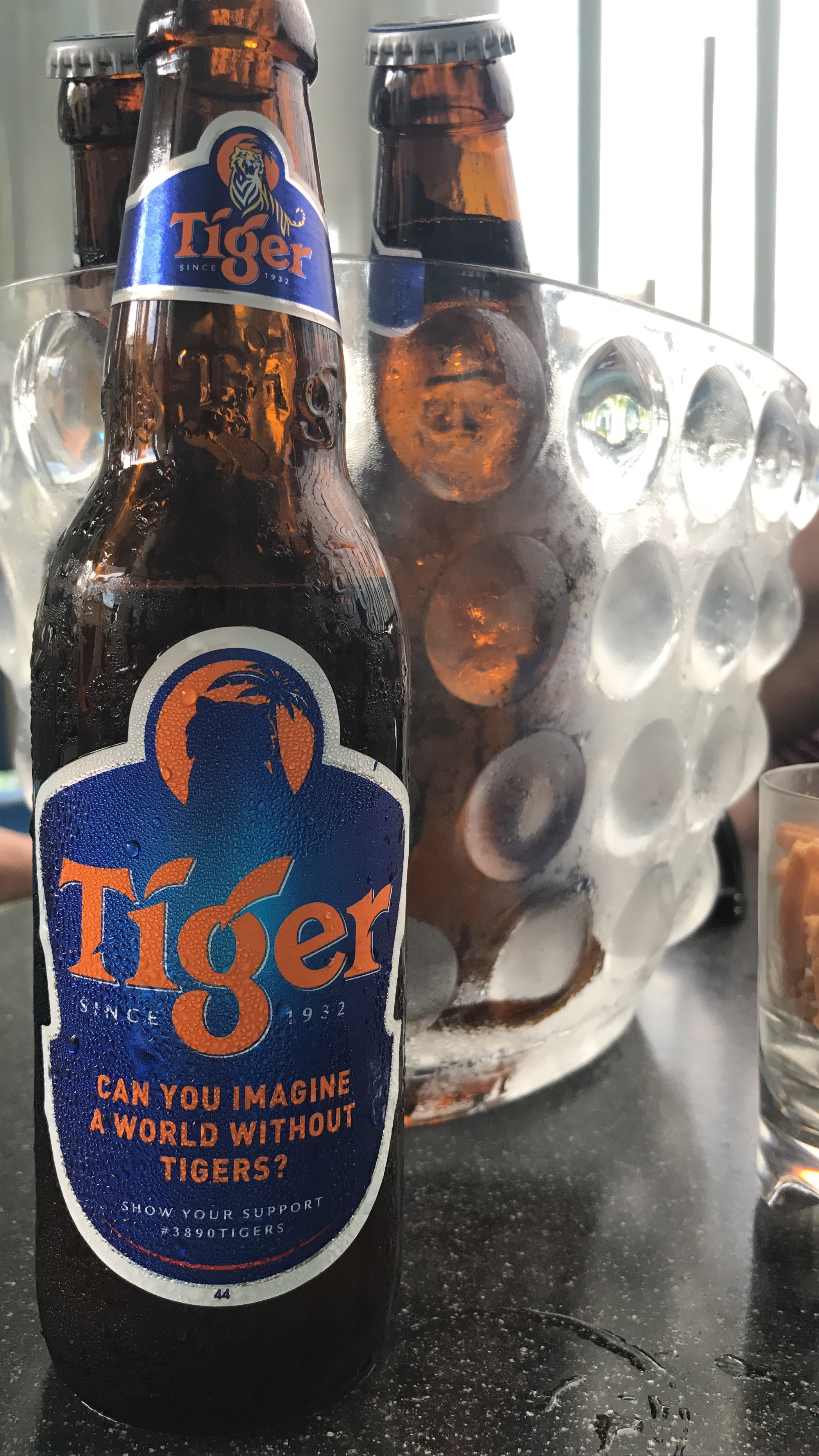 tiger beer isn't cheap in singapore