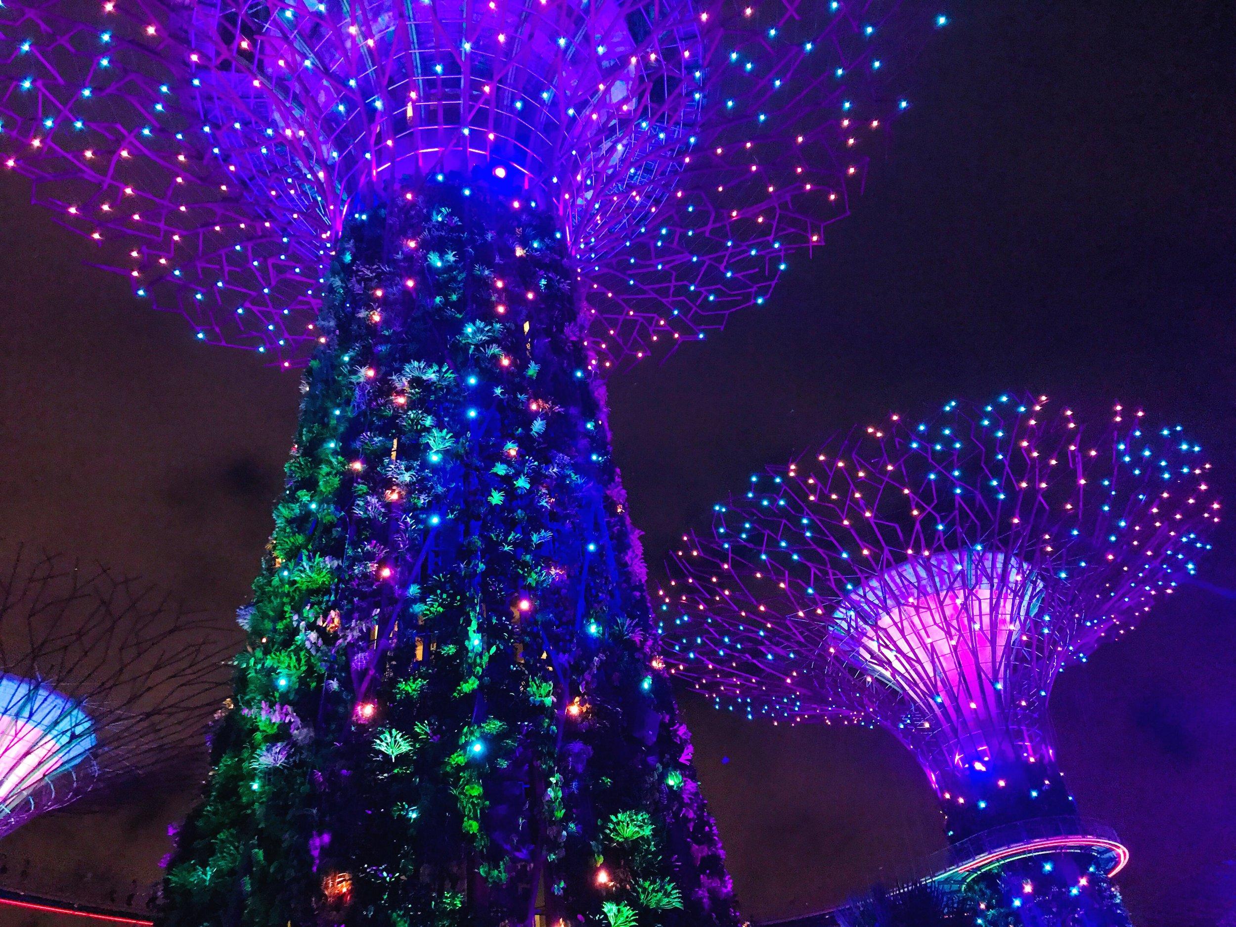 supertree grove light show singapore