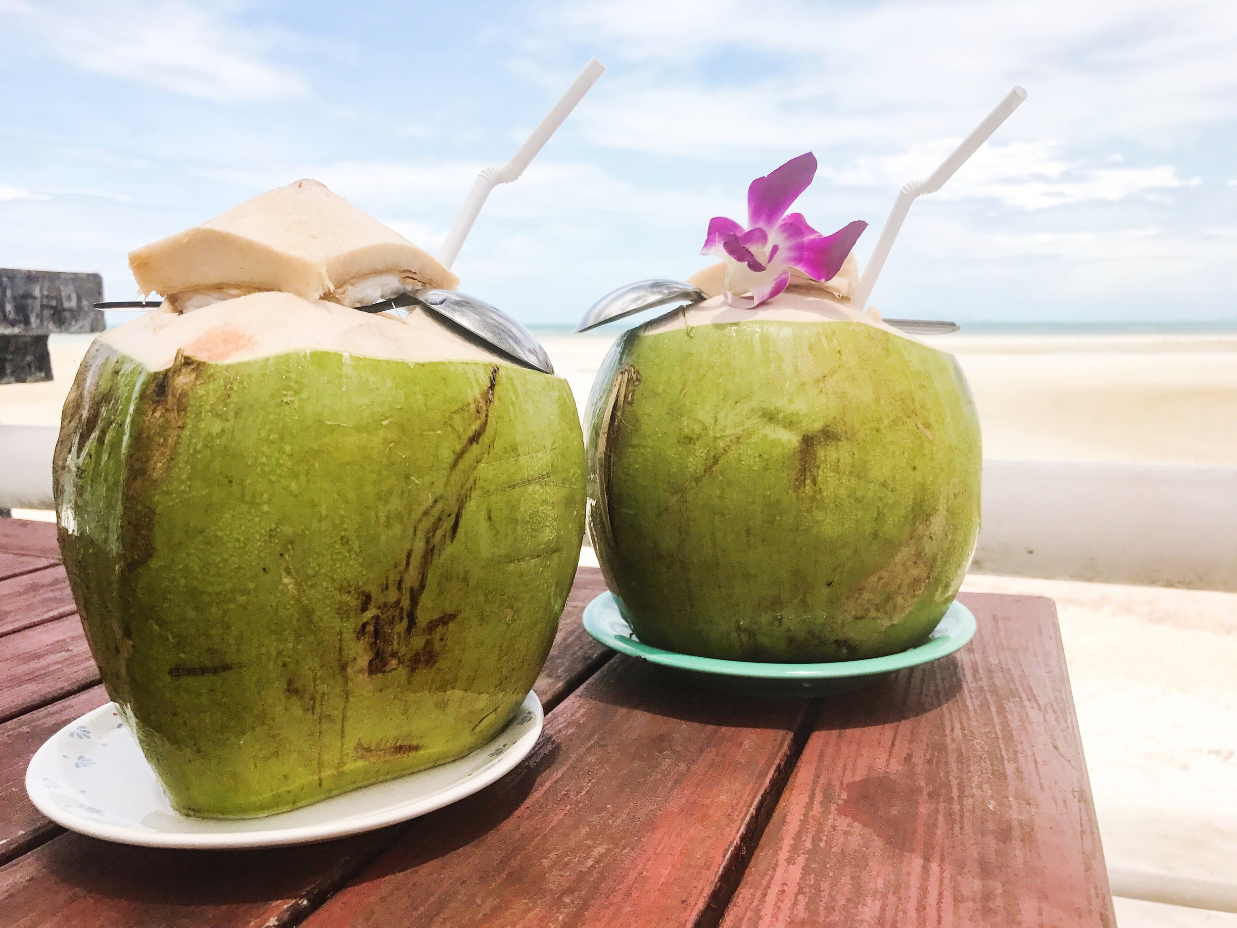 go coconuts on koh samui thailand