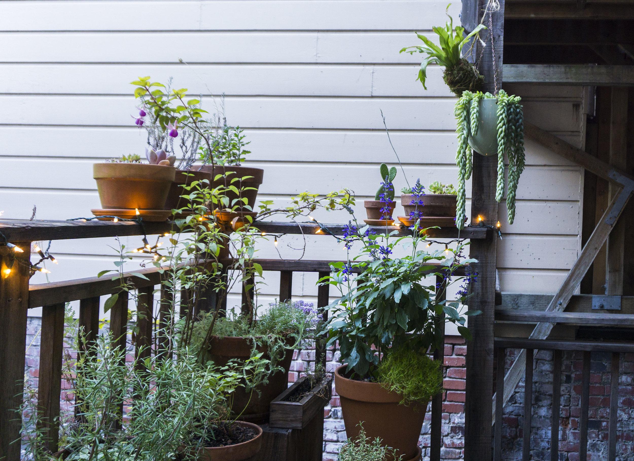 city container garden outdoor living spaces