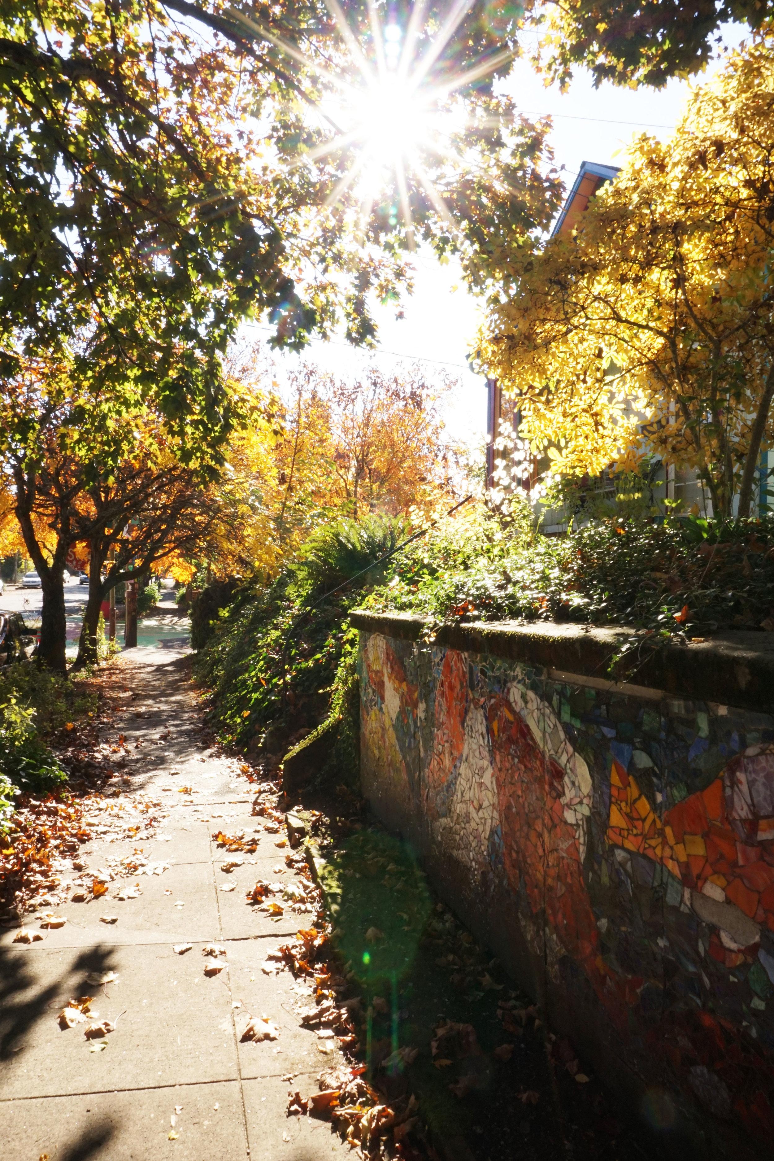 portland fall trip things to do