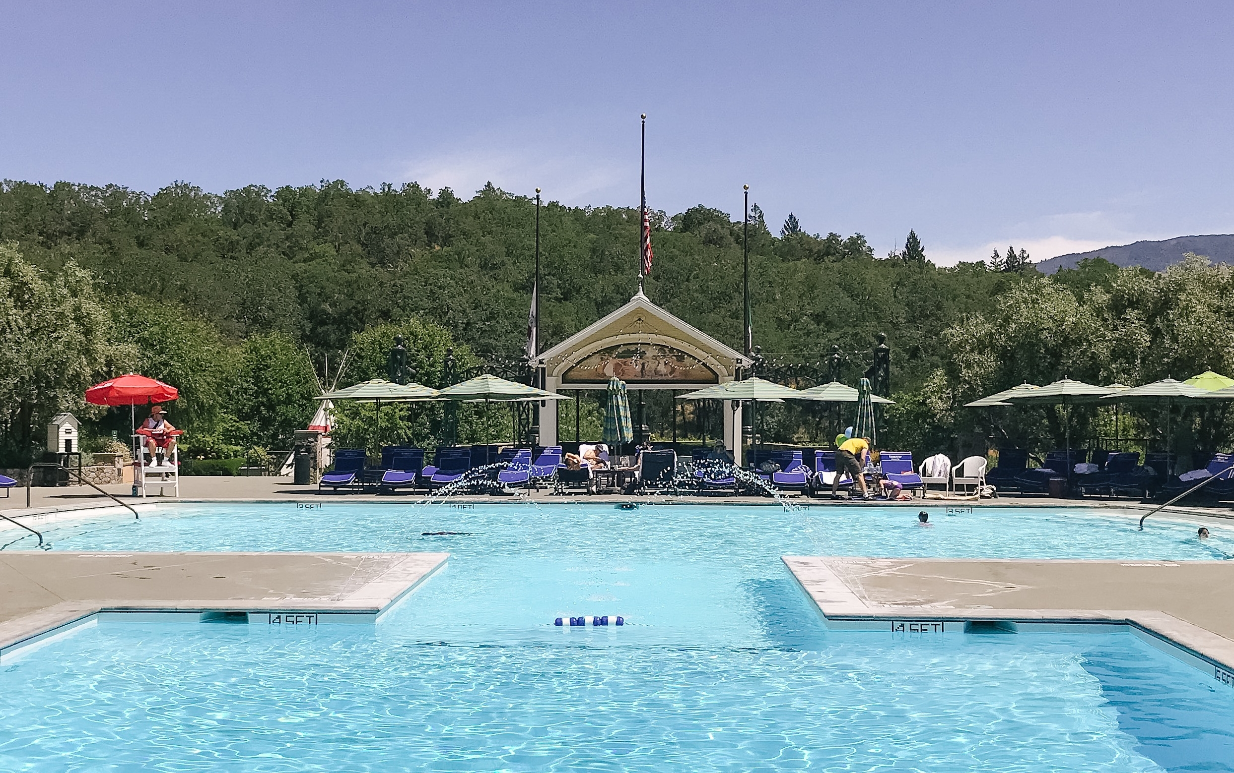 francis ford coppola pool and winery day trip