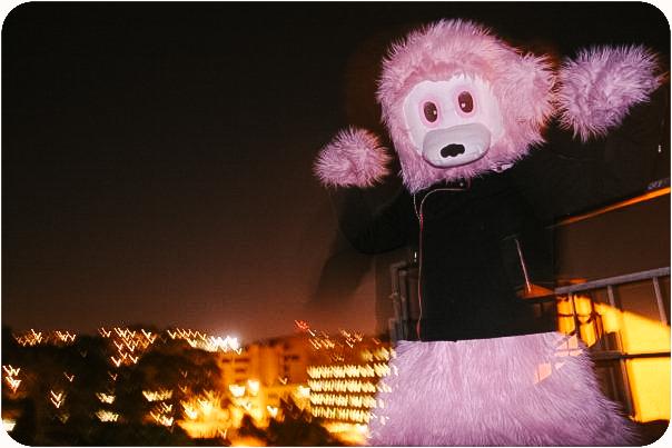 Pink Bear Suit, 2009*
