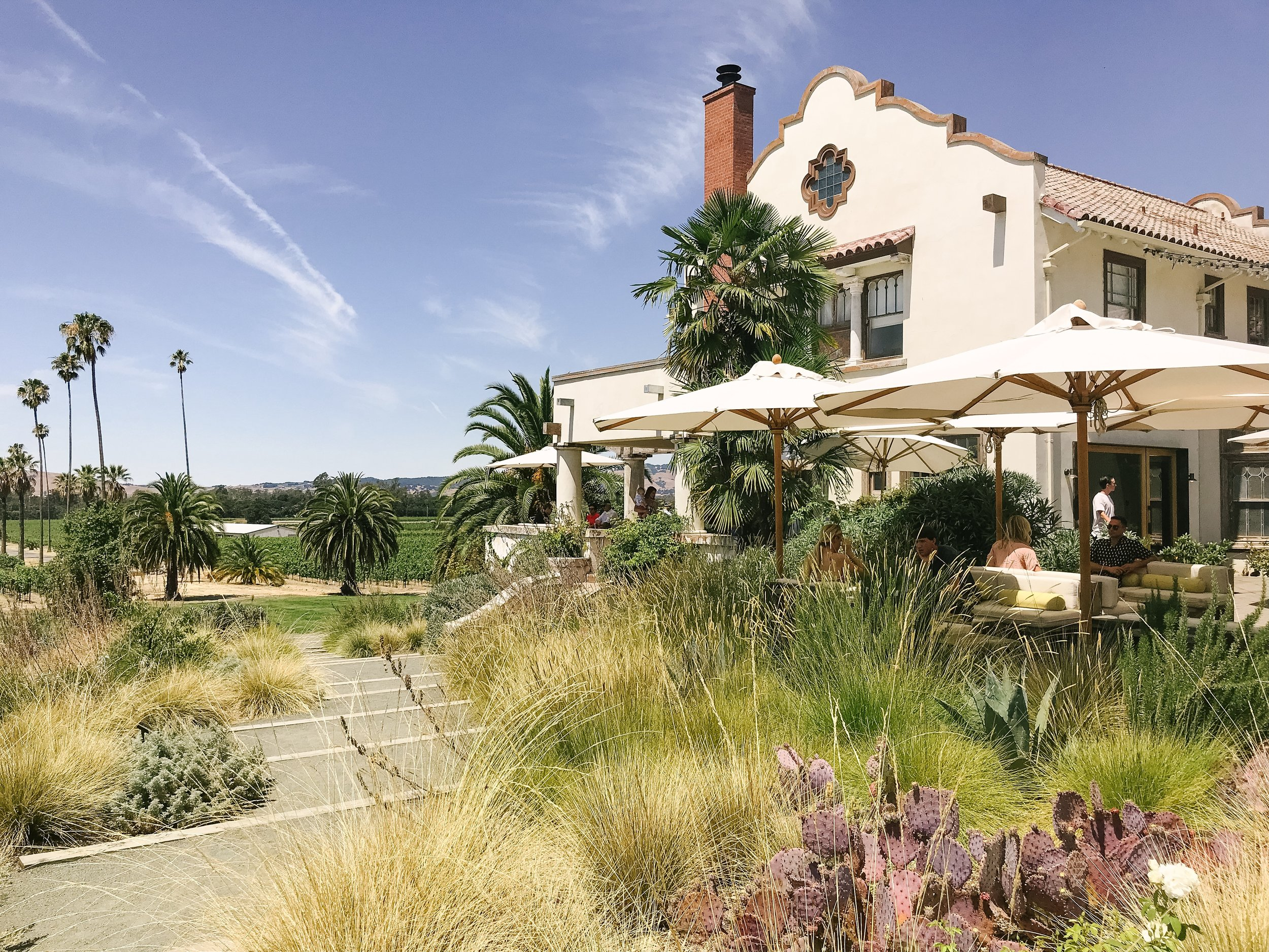 best winery in sonoma