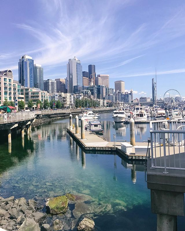 Craving Seattle's sunshine while trying to survive San Francisco summer. @limebike made adventuring around Seattle fun + super convenient. Loved the electric assist bikes. ☃️ #latergram #seattlethings #weekendwanderer #westcoast #limebikes
