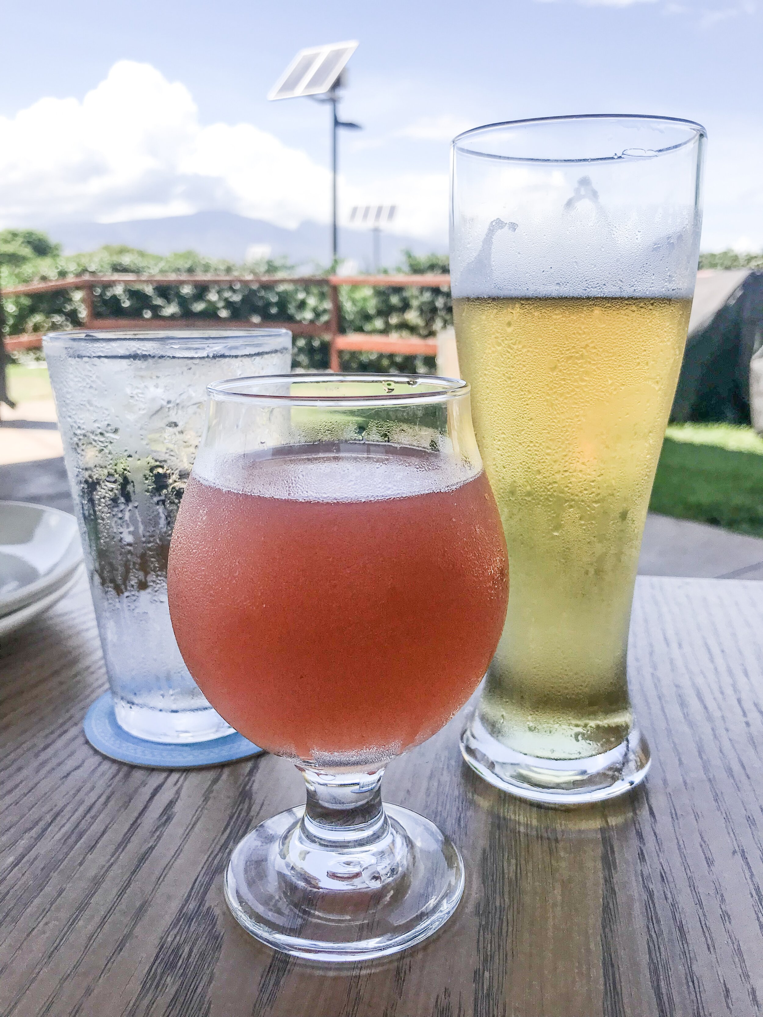 Maui Brewing Beer