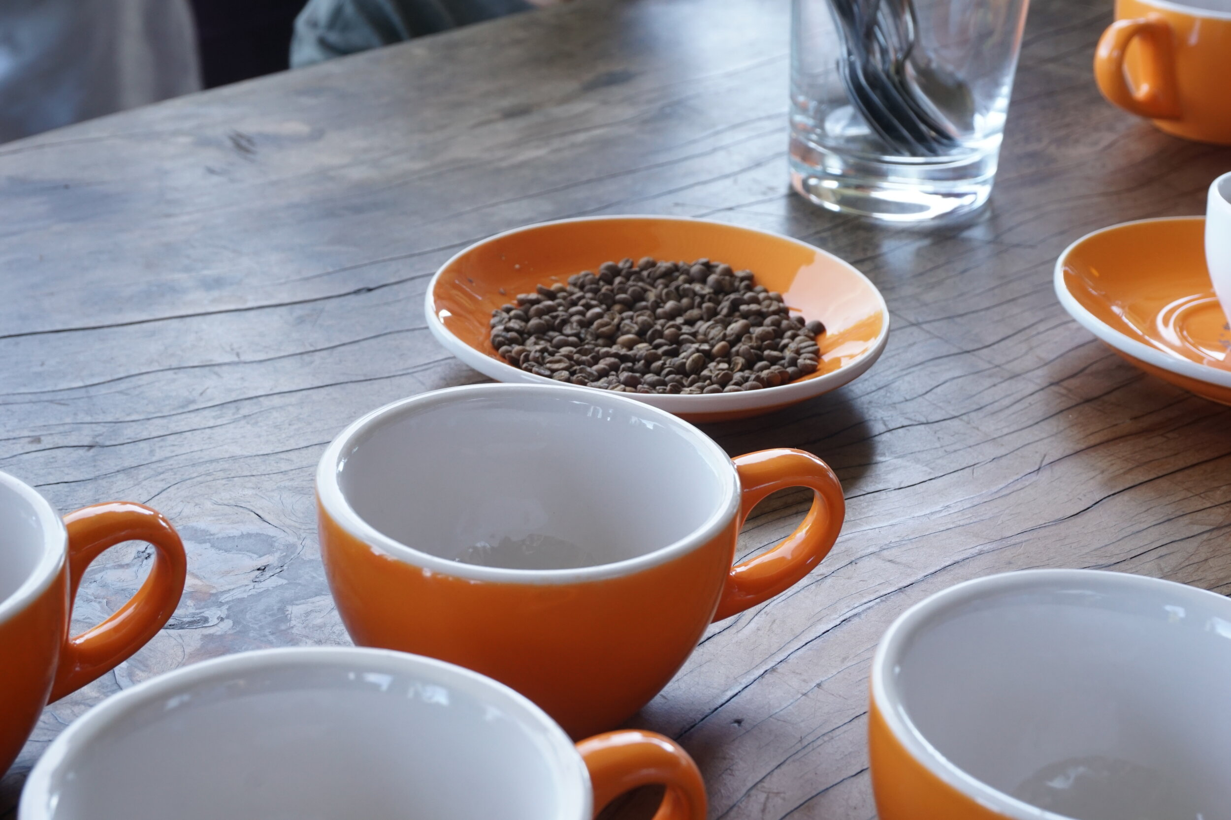 O'o Farms Coffee tasting and tour