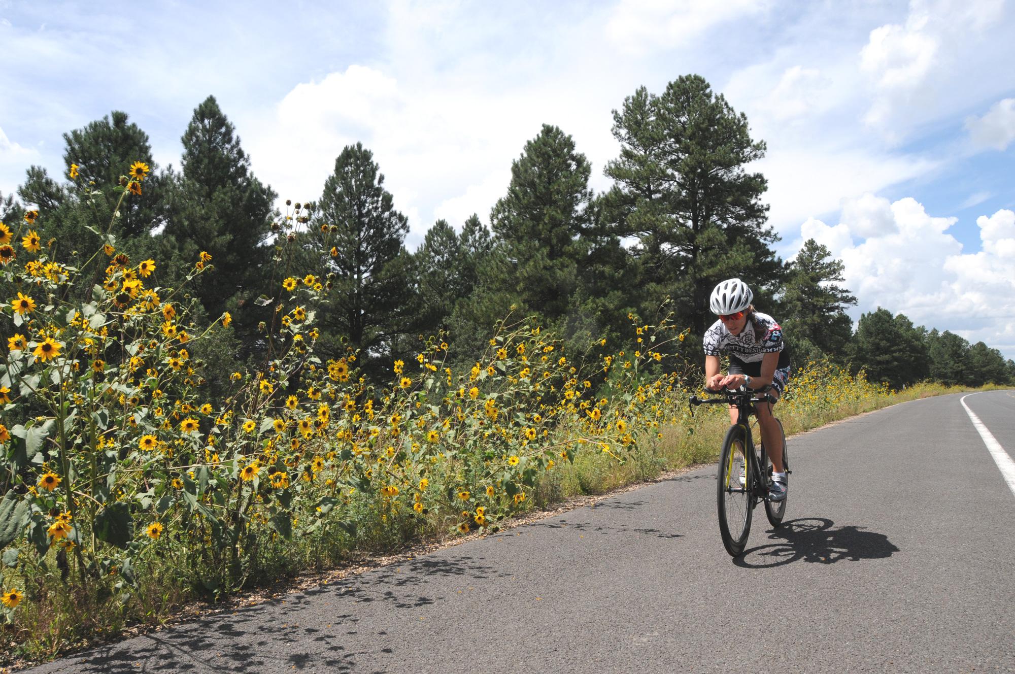 bike2_web.jpg