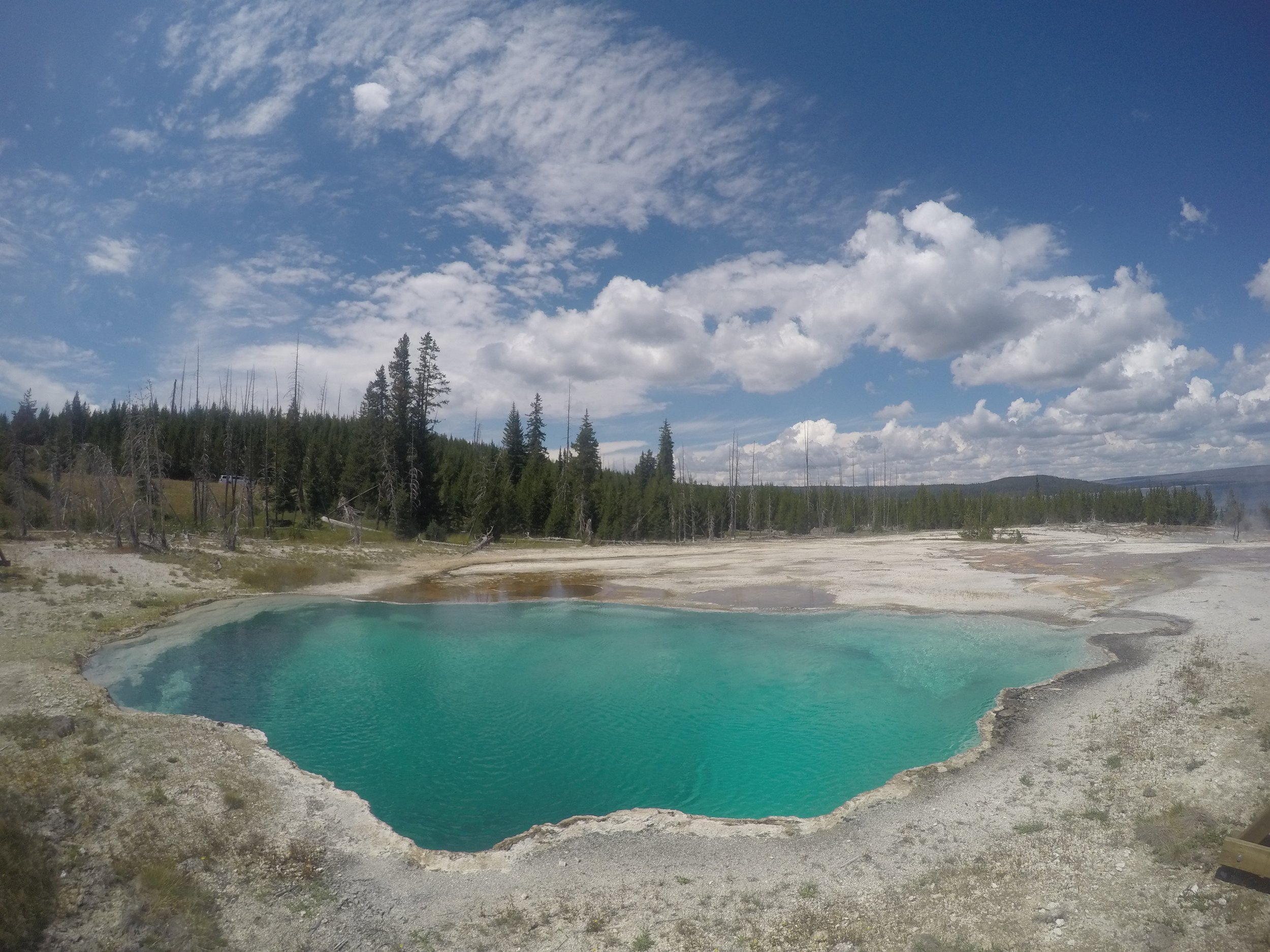 Just one of many amazing thermal pools in Yellowstone