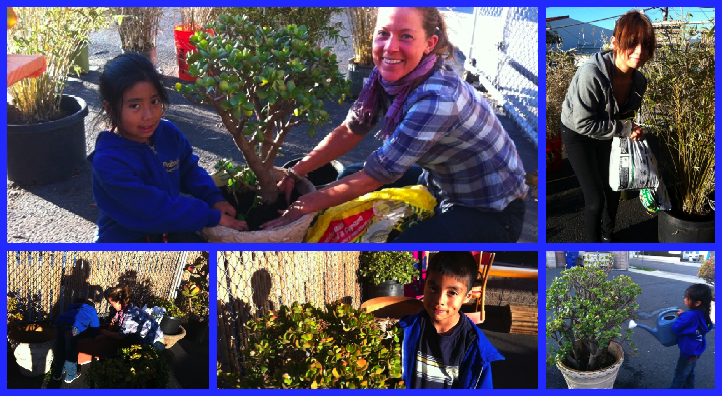 Home Improvements gave Youth Interactive a $50 gift card, which volunteer Daphne Romani promptly put to good use saving our plants! The kids wanted to help with the replanting, so what started as a day of work quickly became a day of fun!   Thank you Home Improvements, Daphne Romani, and the kids who helped out!