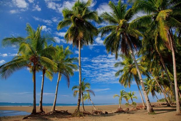 uvita-costa-rica-01.jpg
