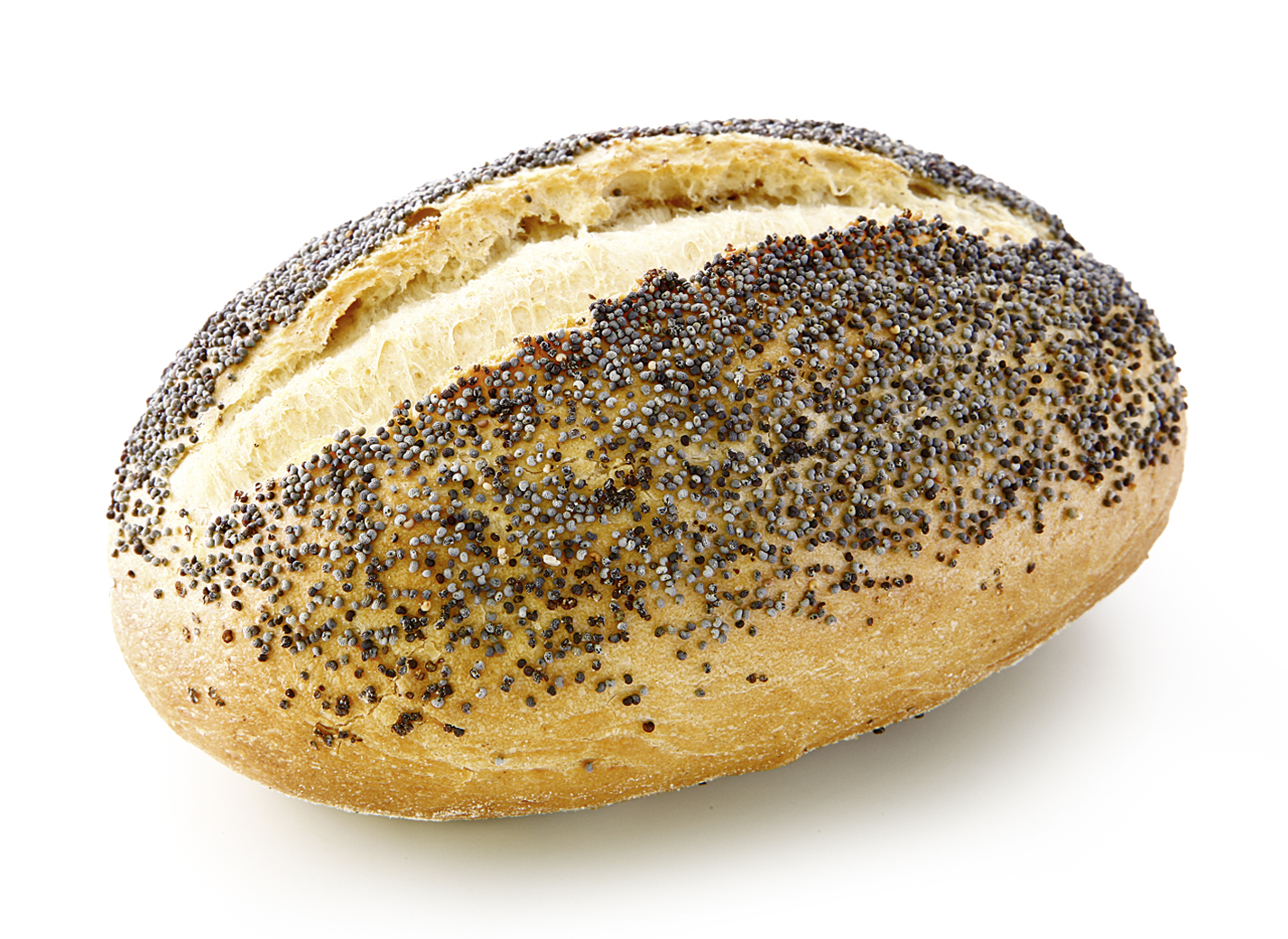 Poppy Seed Roll - Small wheat bakery oval/ sprinkled with poppy seeds