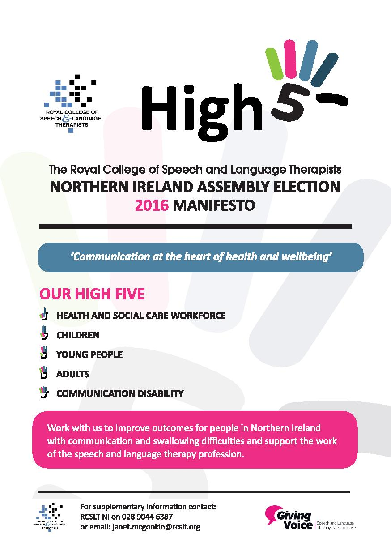Election Manifesto Flyer (1)-page-001 (1).jpg