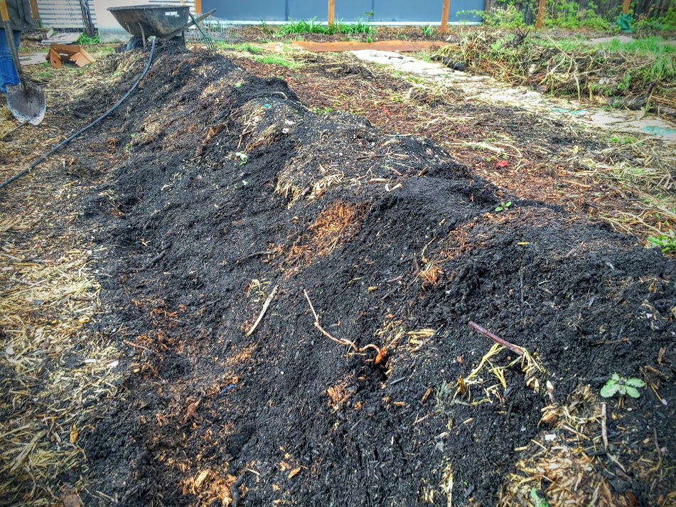 A fellow farmer layering some new soil and compost as a top layer on the Hugulkultur.