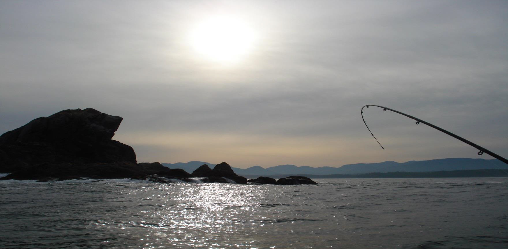 World Class Salmon, Halibut, and Cod fishing within Barkley Sound, right at your doorstep