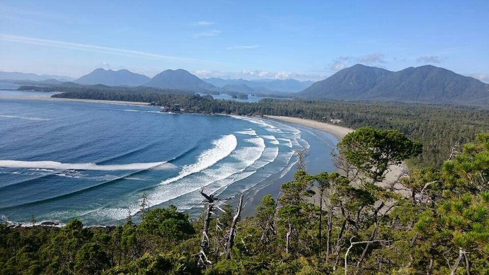 View Over Tofino and Cox Bay.jpg