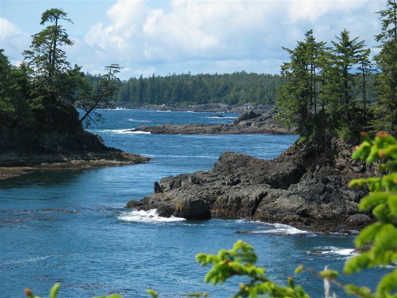Pacific Rim National Park.jpg
