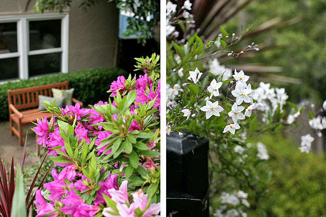 Seasonal and perennial flowers throughout the garden
