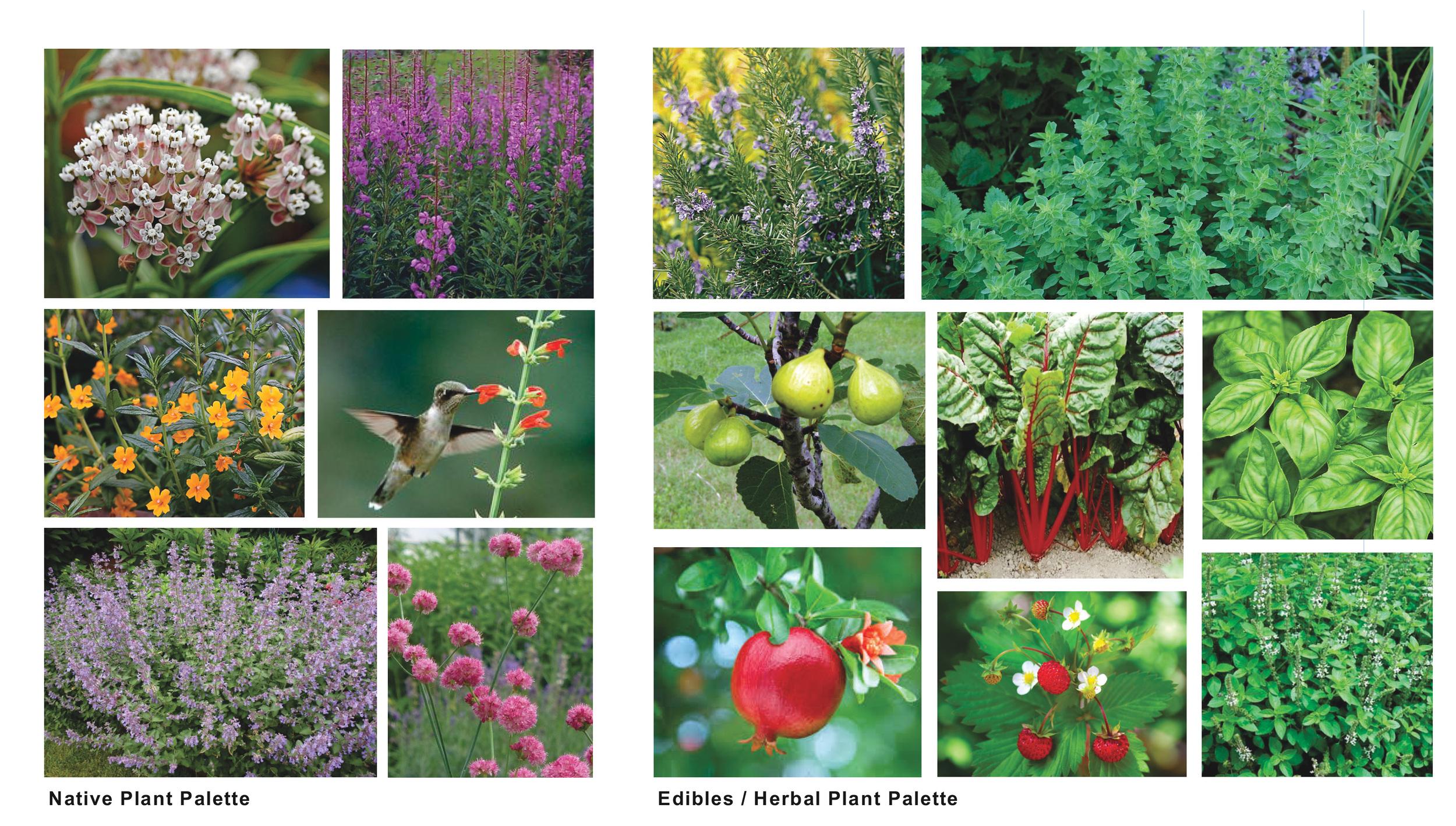 Glorietta Garden_Images sRGB.jpg