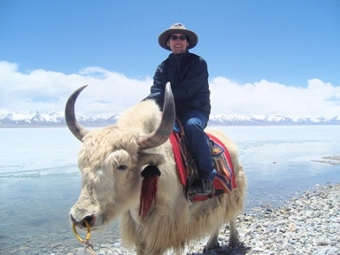 A tourist on a yak at the Namtso Lake at 4700m, its background is famous Mt Nyenchen Gangsang-filtered.jpg