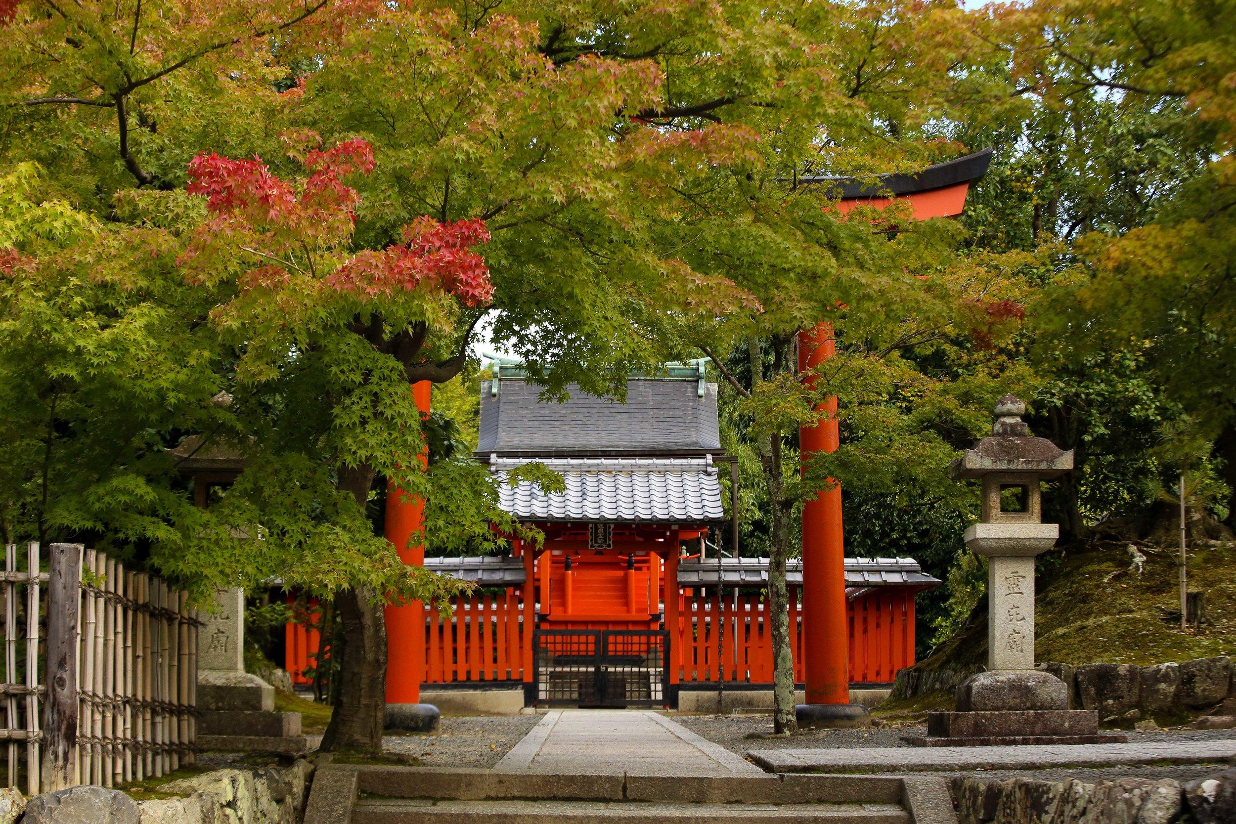 Japan_KatieGraves-1416.jpg