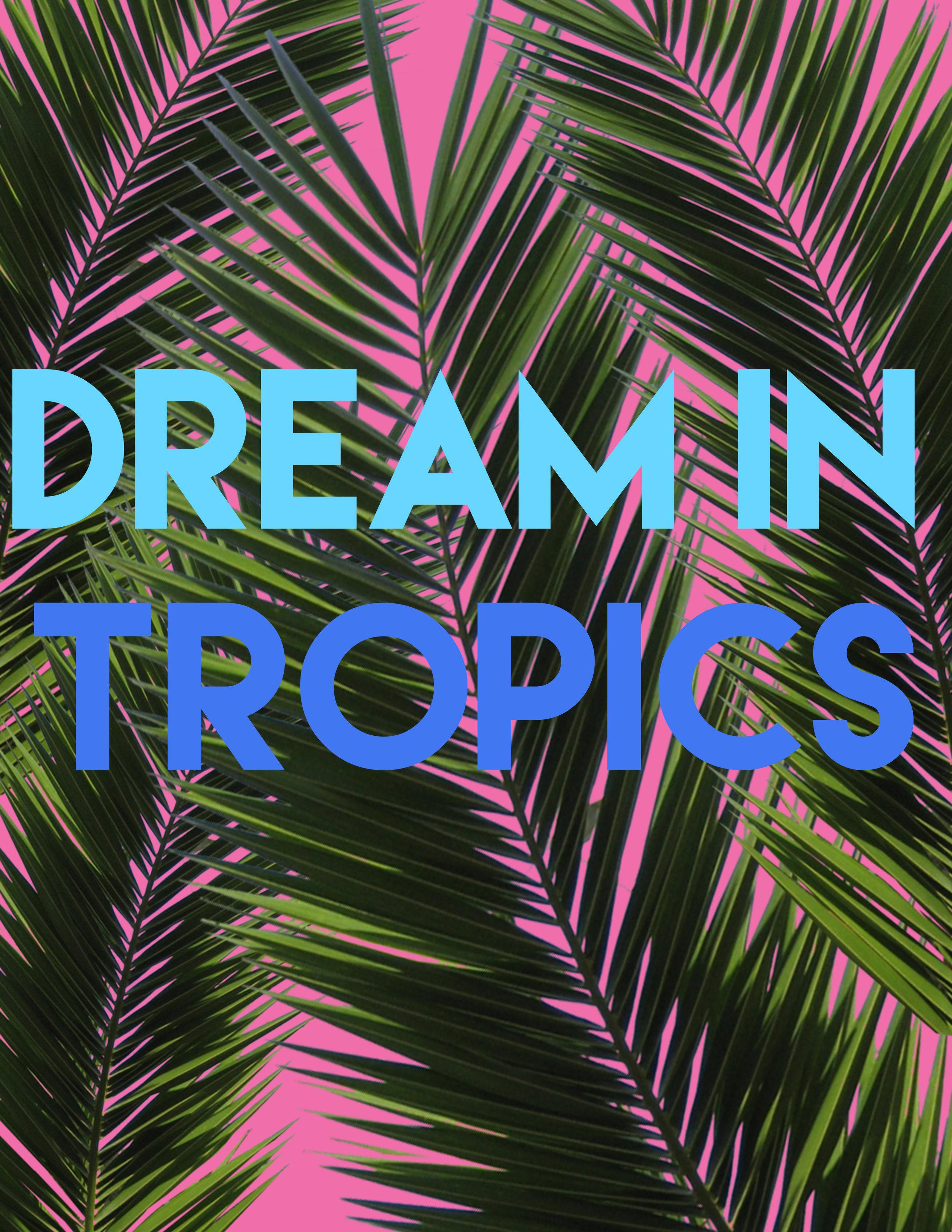 dream in tropics.jpg
