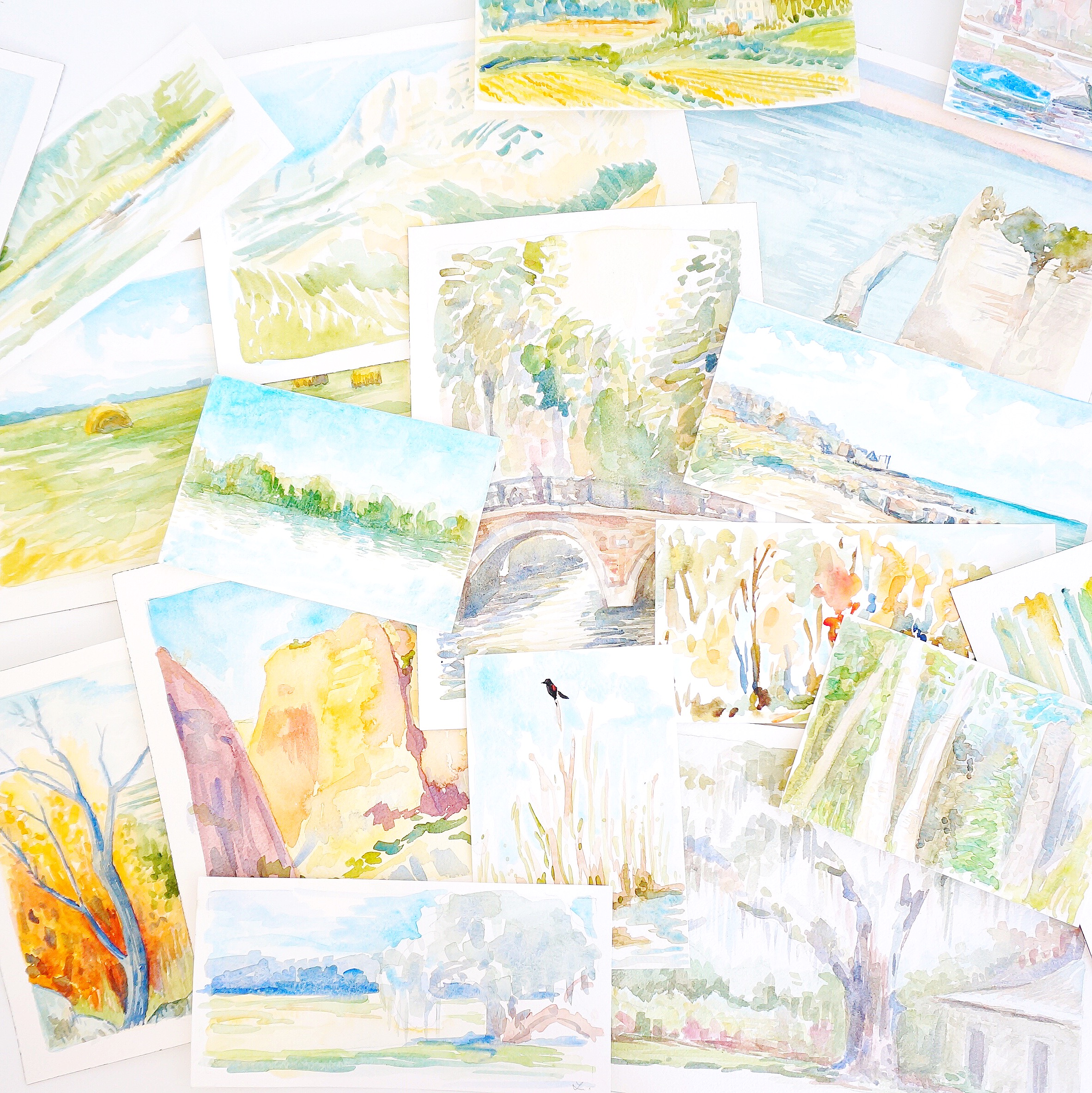 a few of Lindsay's plein air landscape paintings