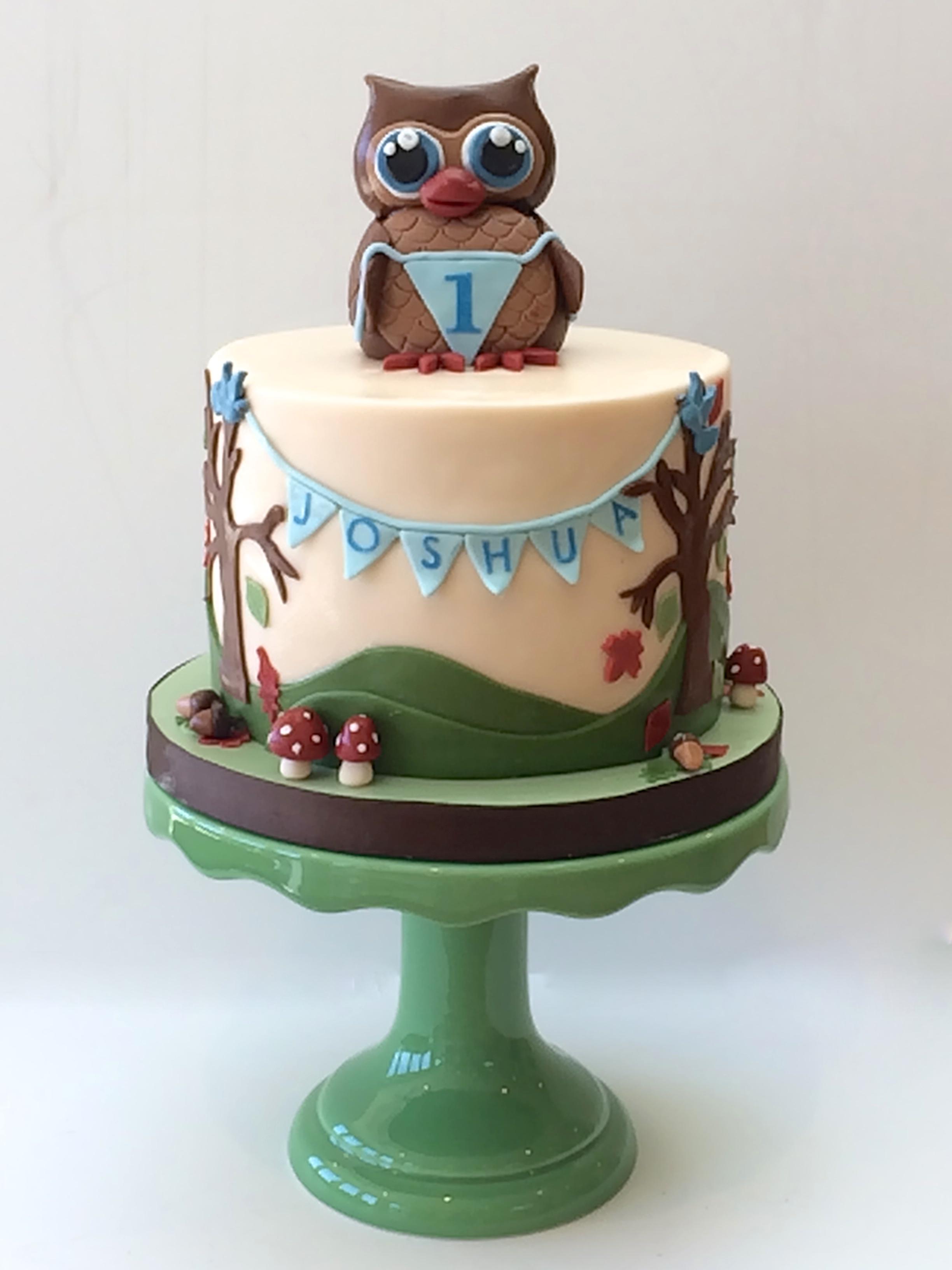 Owl Woodland Smash Cake
