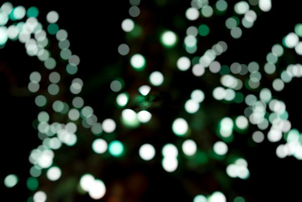 Trail of Lights-36.jpg
