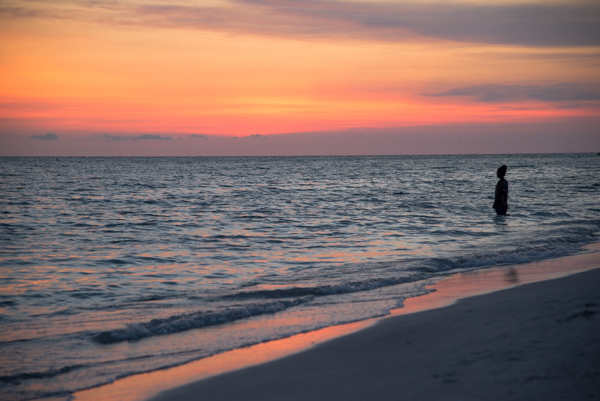 Photo by Carmen Buck- St. Petersburg Beach, FL